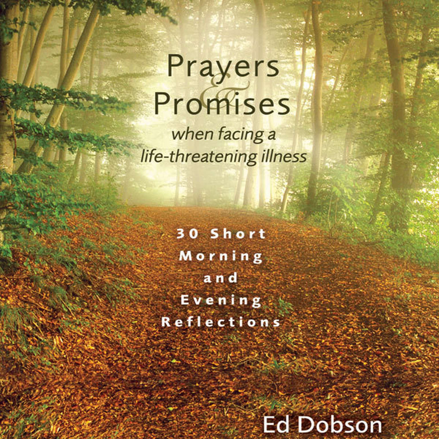 Printable Prayers and Promises When Facing a Life-Threatening Illness: 30 Short Morning and Evening Reflections Audiobook Cover Art
