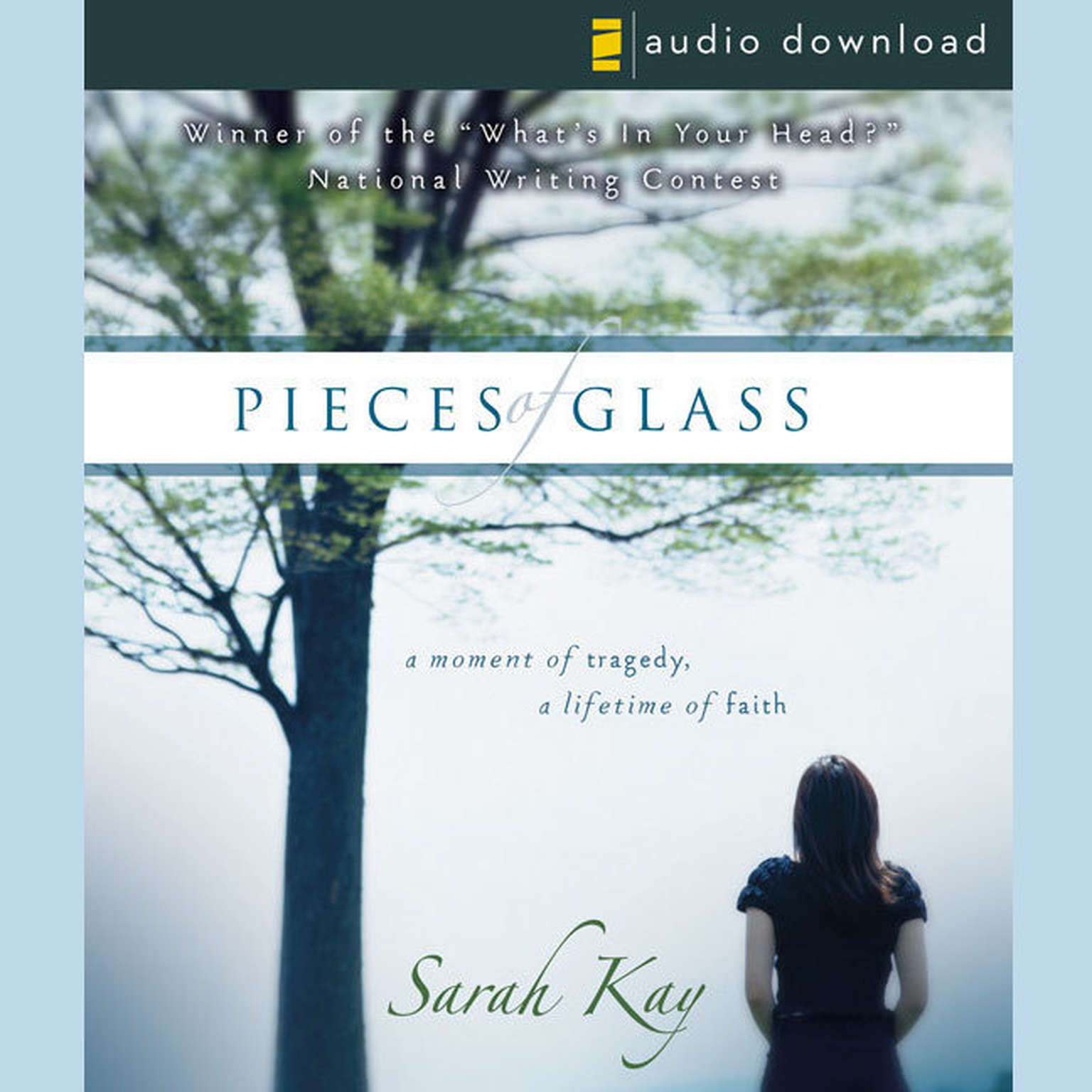 Printable Pieces of Glass: A Moment of Tragedy, a Lifetime of Faith Audiobook Cover Art