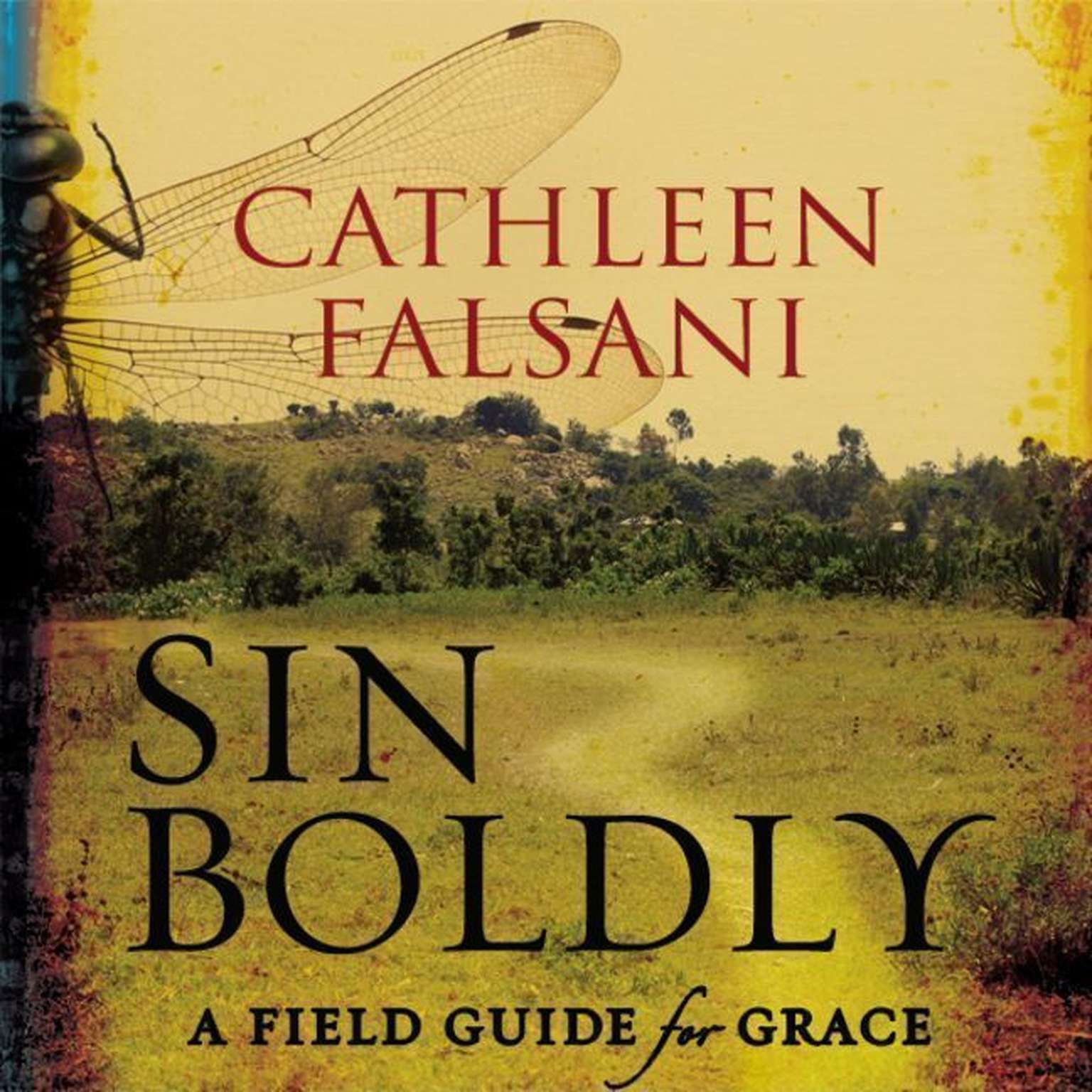 Printable Sin Boldly: A Field Guide for Grace Audiobook Cover Art