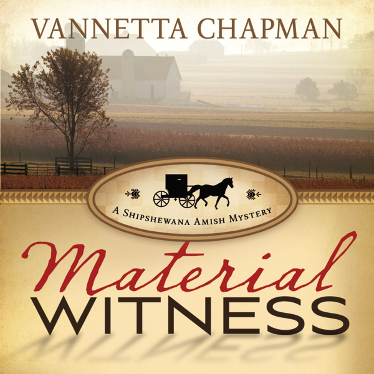 Printable Material Witness Audiobook Cover Art