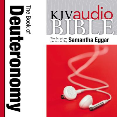 Pure Voice Audio Bible - King James Version, KJV: (05) Deuteronomy Audiobook, by Zondervan