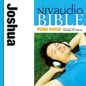 NIV, Audio Bible, Pure Voice: Joshua, Audio Download (Narrated by George W. Sarris) Audiobook, by Zondervan