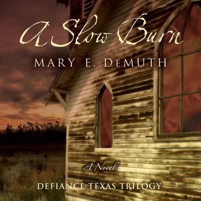 A Slow Burn: A Novel Audiobook, by Mary E. DeMuth