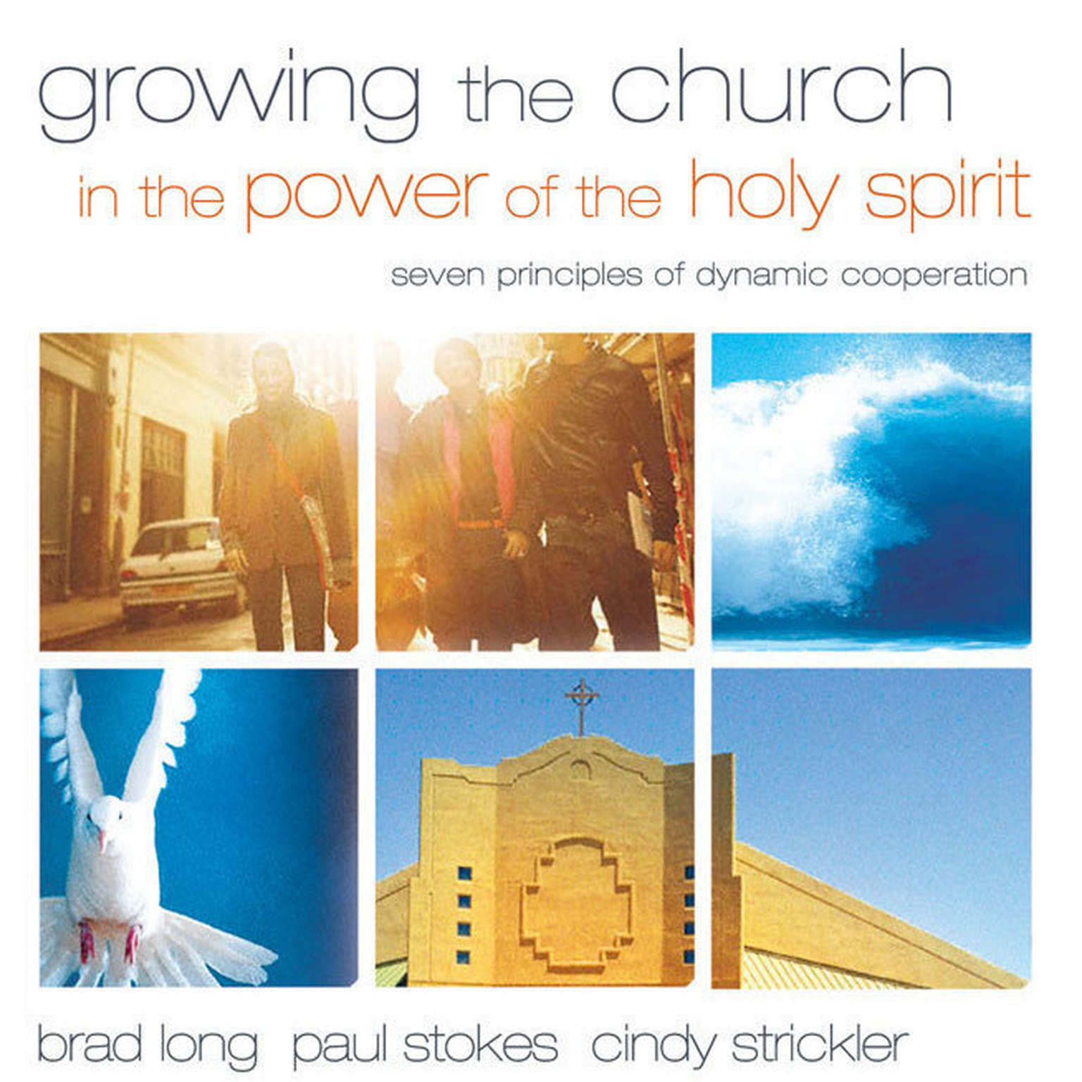 Printable Growing the Church in the Power of the Holy Spirit: Seven Principles of Dynamic Cooperation Audiobook Cover Art