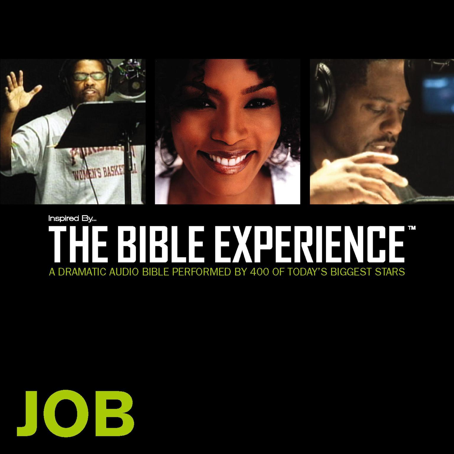 Printable TNIV, Inspired By…The Bible Experience: Job, Audio Download Audiobook Cover Art