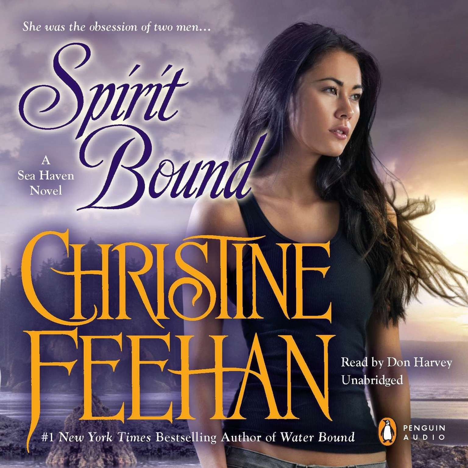 Printable Spirit Bound Audiobook Cover Art
