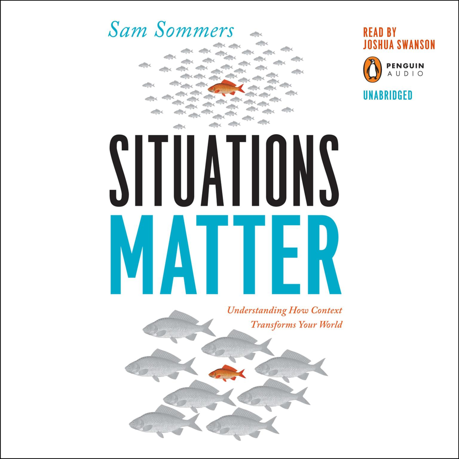 Printable Situations Matter: Understanding How Context Transforms Your World Audiobook Cover Art