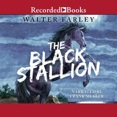 The Black Stallion Audiobook, by Walter Farley