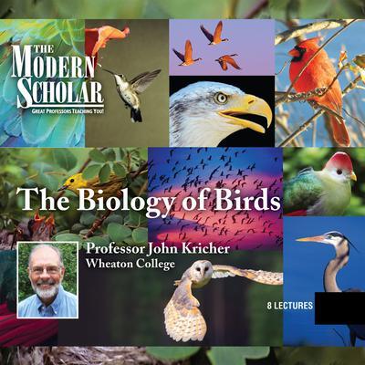 Biology of Birds Audiobook, by John Kricher