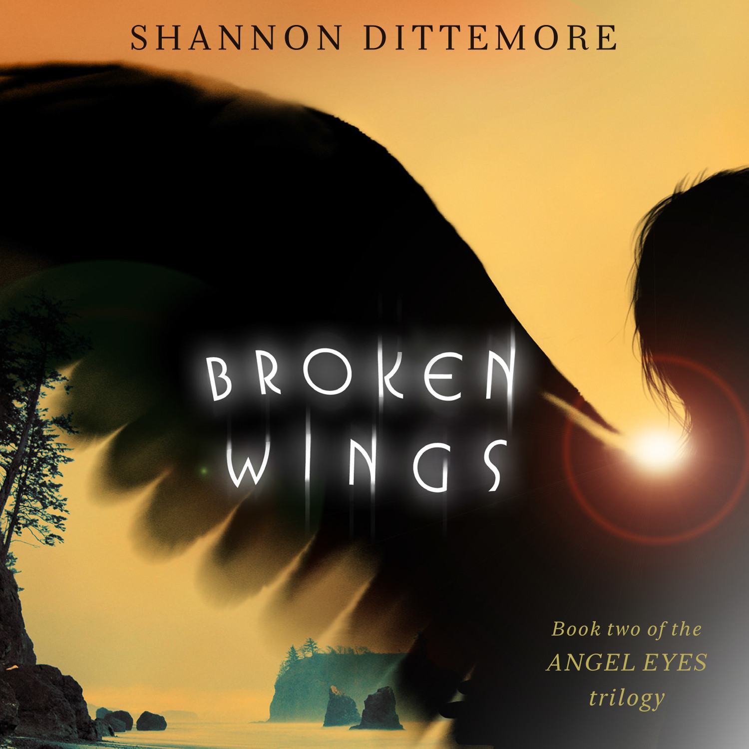 Printable Broken Wings Audiobook Cover Art