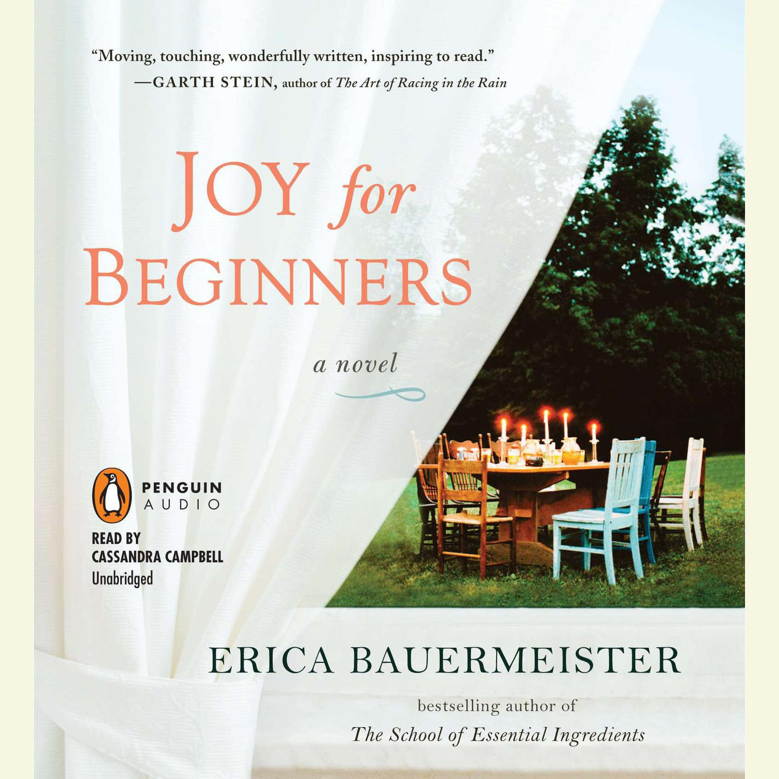 Printable Joy for Beginners Audiobook Cover Art
