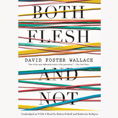 Both Flesh and Not: Essays Audiobook, by David Foster Wallace