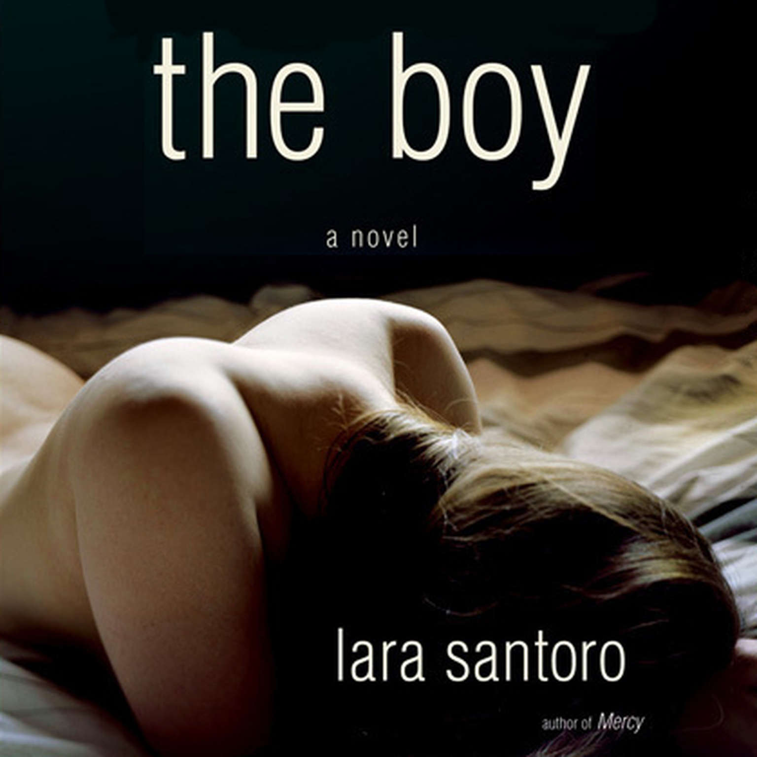 Printable The Boy: A Novel Audiobook Cover Art