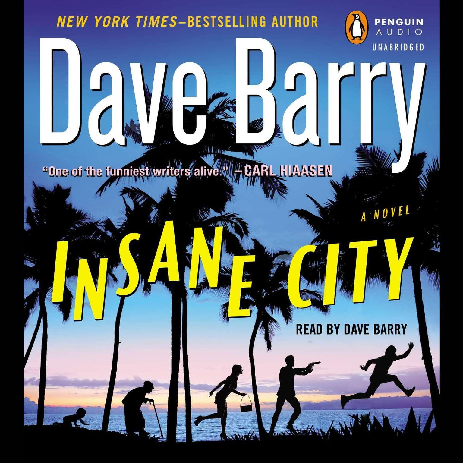 Printable Insane City Audiobook Cover Art
