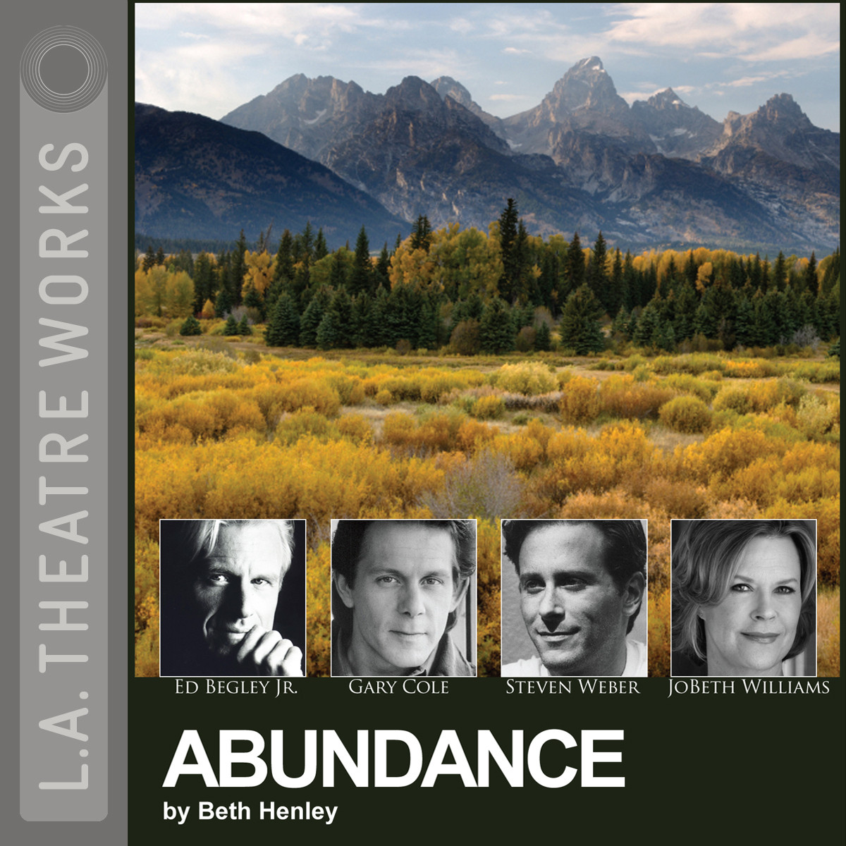 Printable Abundance Audiobook Cover Art