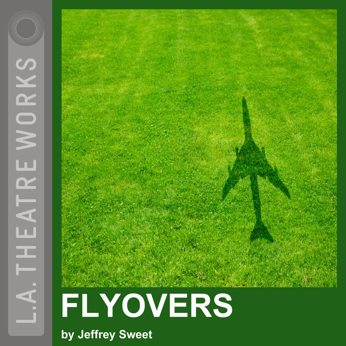 Printable Flyovers Audiobook Cover Art