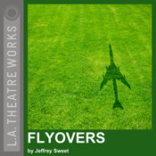 Flyovers Audiobook, by Jeffrey Sweet