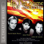 In the Name of Security Audiobook, by Peter Goodchild