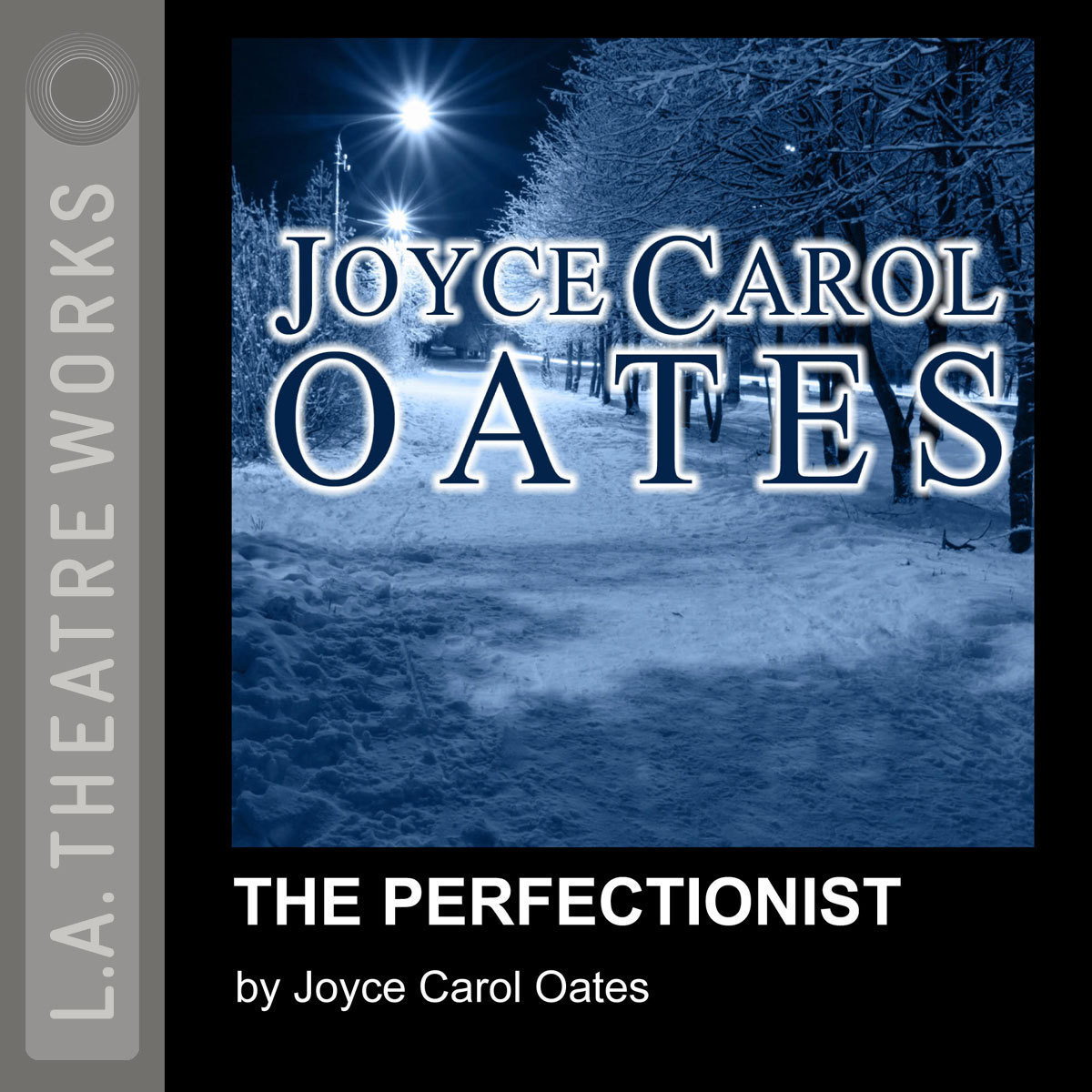 Printable The Perfectionist Audiobook Cover Art