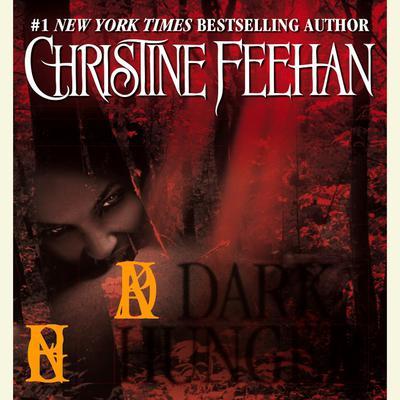 Dark Hunger Audiobook, by Maggie Shayne