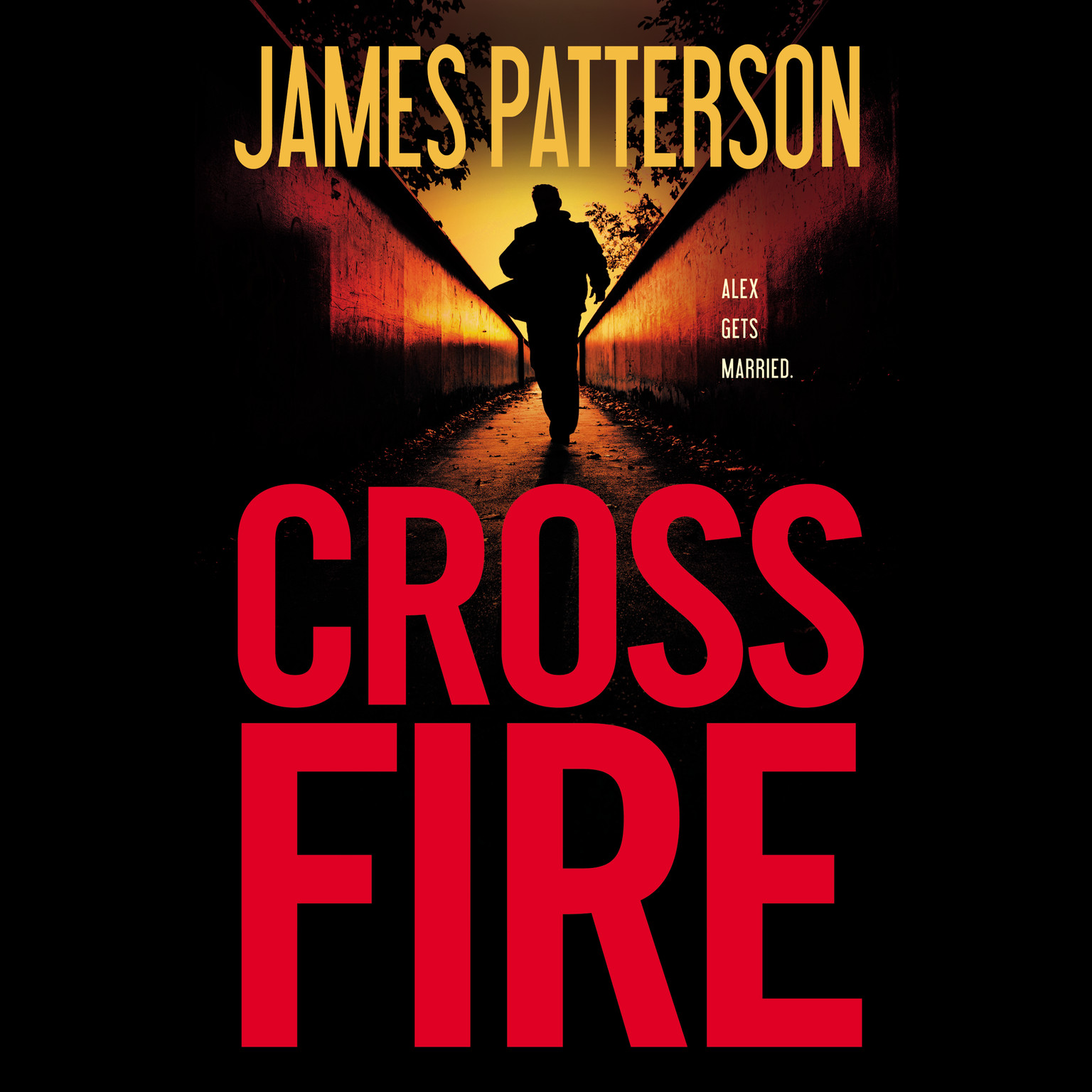 Printable Cross Fire Audiobook Cover Art