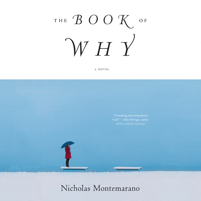 Printable The Book of Why: A Novel Audiobook Cover Art
