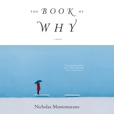 The Book of Why: A Novel Audiobook, by Nicholas Montemarano