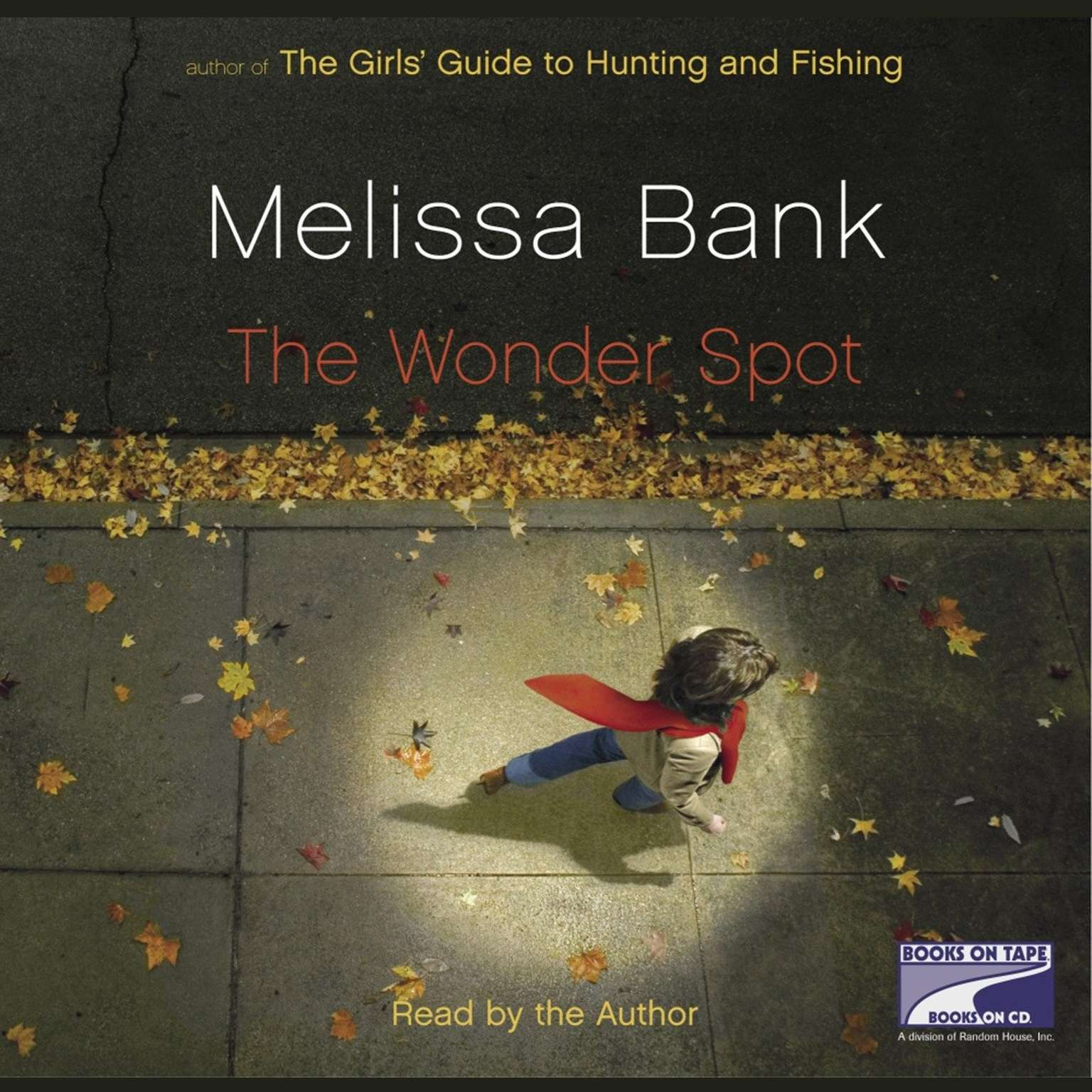 Printable The Wonder Spot Audiobook Cover Art