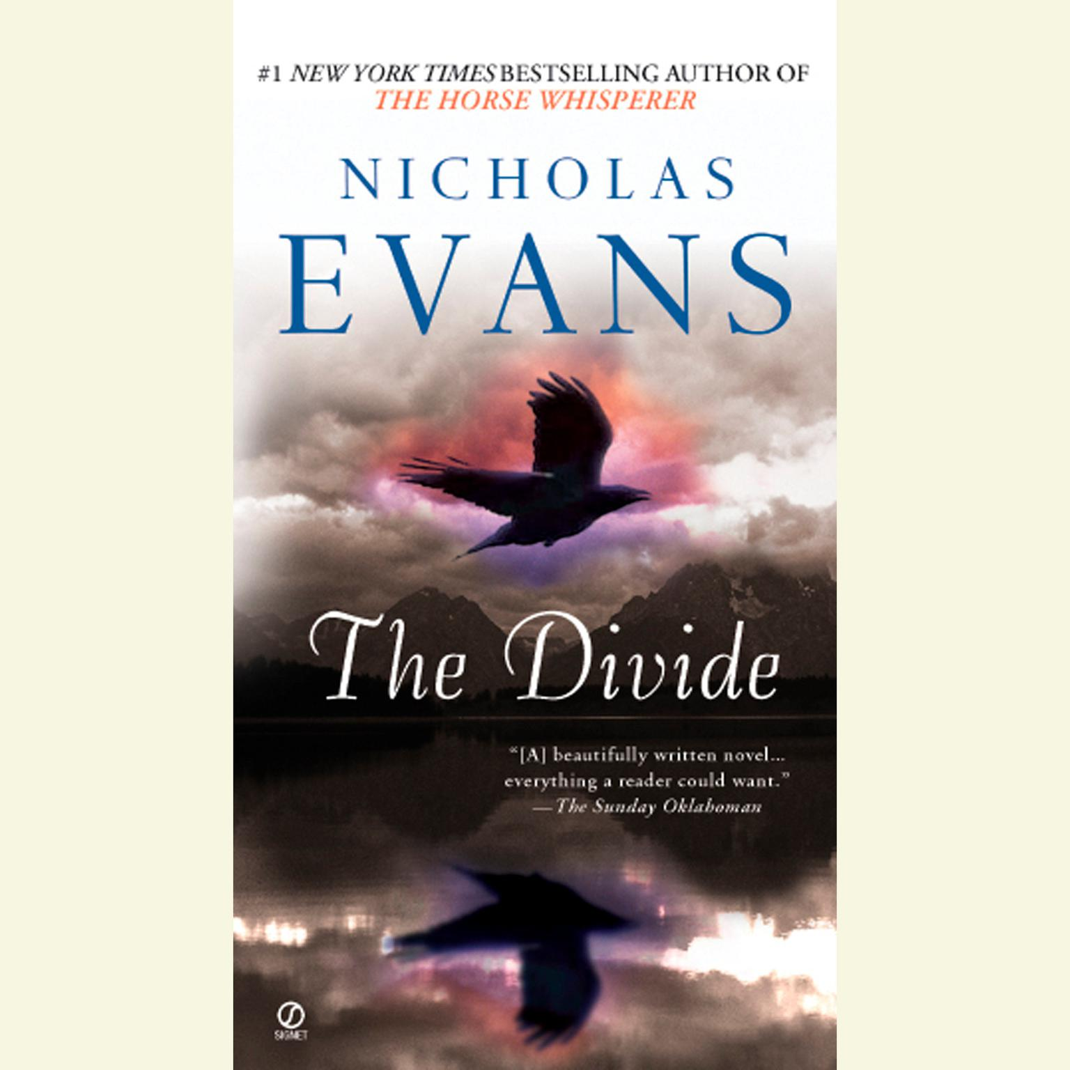 Printable The Divide Audiobook Cover Art