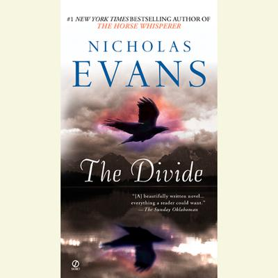 The Divide Audiobook, by