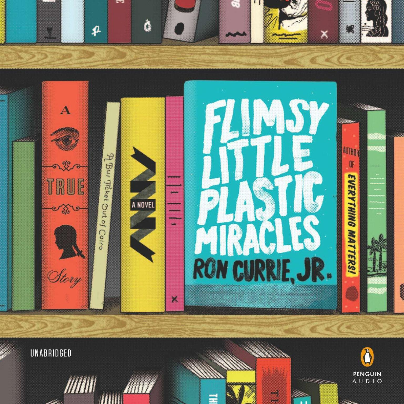 Printable Flimsy Little Plastic Miracles: A Novel Audiobook Cover Art