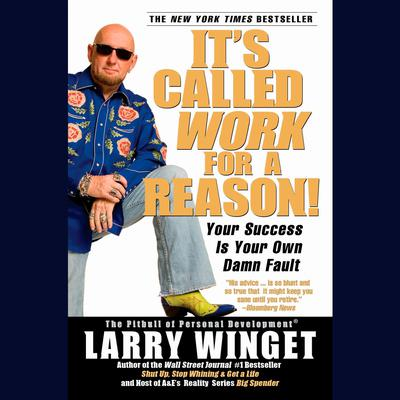 Its Called Work for a Reason!: Your Success Is Your Own Damn Fault Audiobook, by Larry Winget
