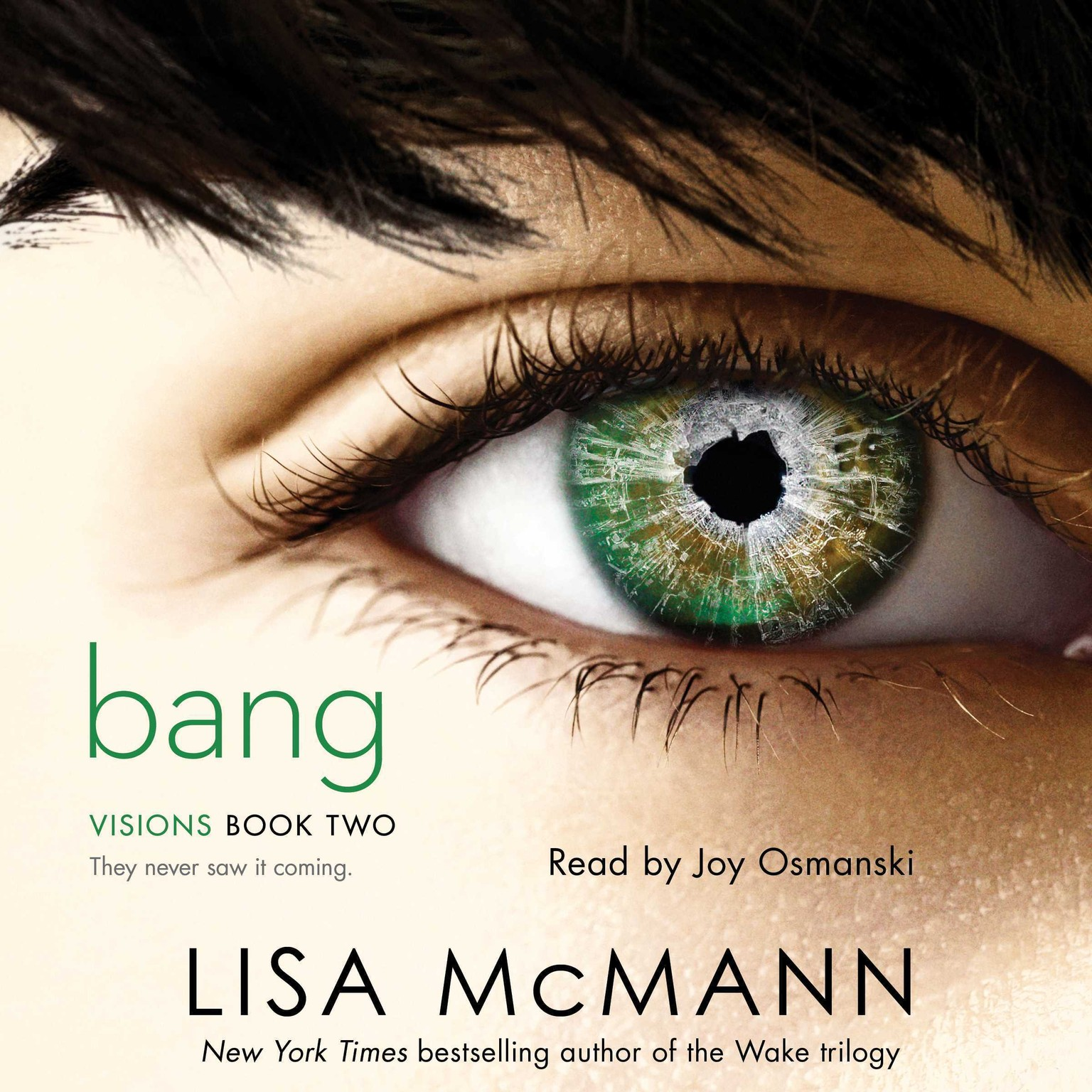 Printable Bang Audiobook Cover Art