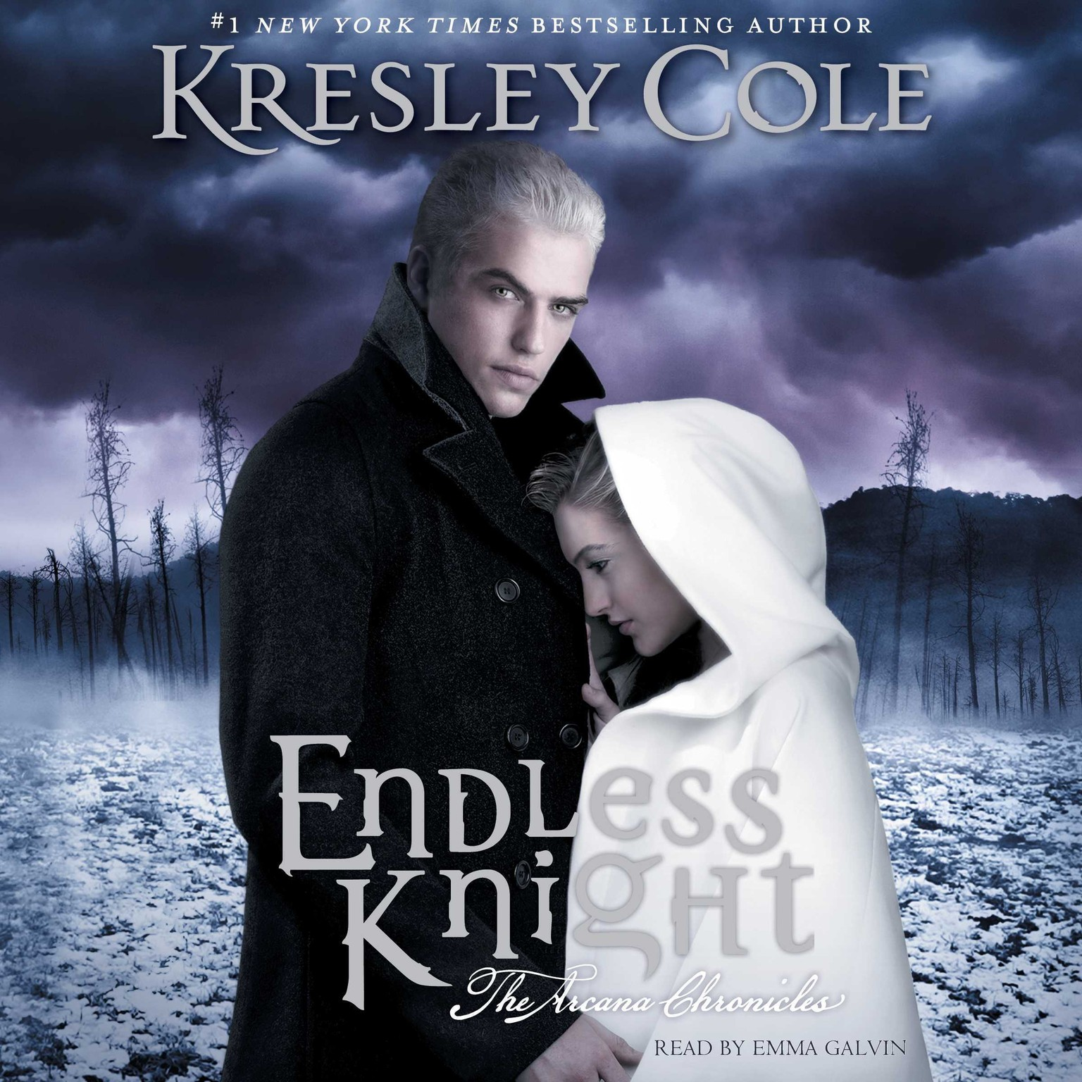 Printable Endless Knight Audiobook Cover Art