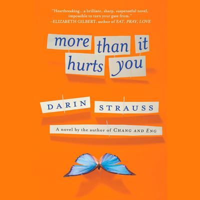 More Than It Hurts You Audiobook, by Darin Strauss
