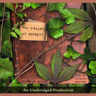 The Valley of Secrets Audiobook, by Charmian Hussey