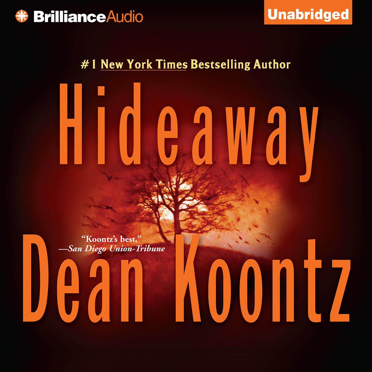 Printable Hideaway Audiobook Cover Art