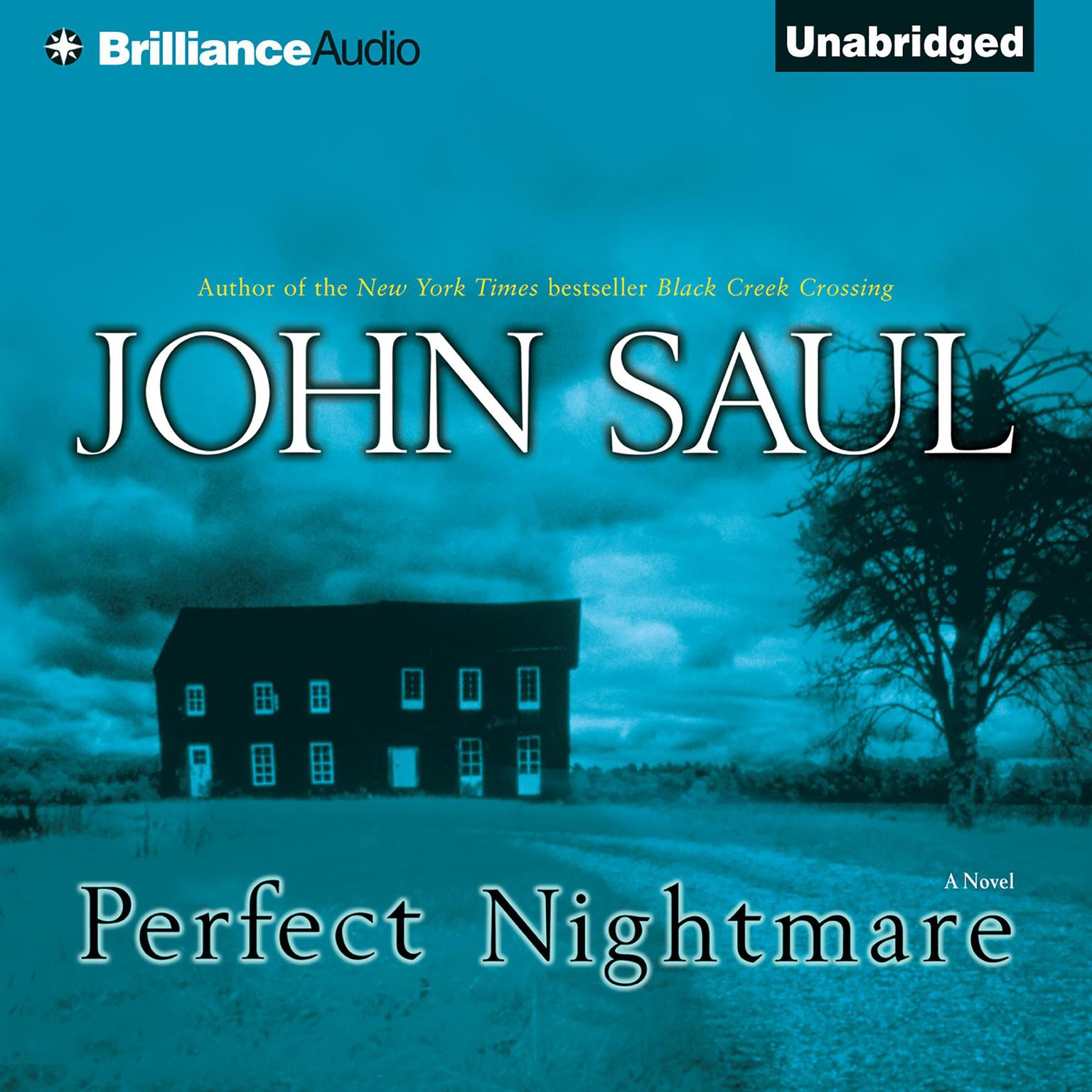 Printable Perfect Nightmare Audiobook Cover Art
