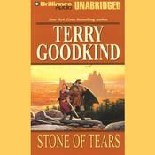 Stone of Tears Audiobook, by Terry Goodkind