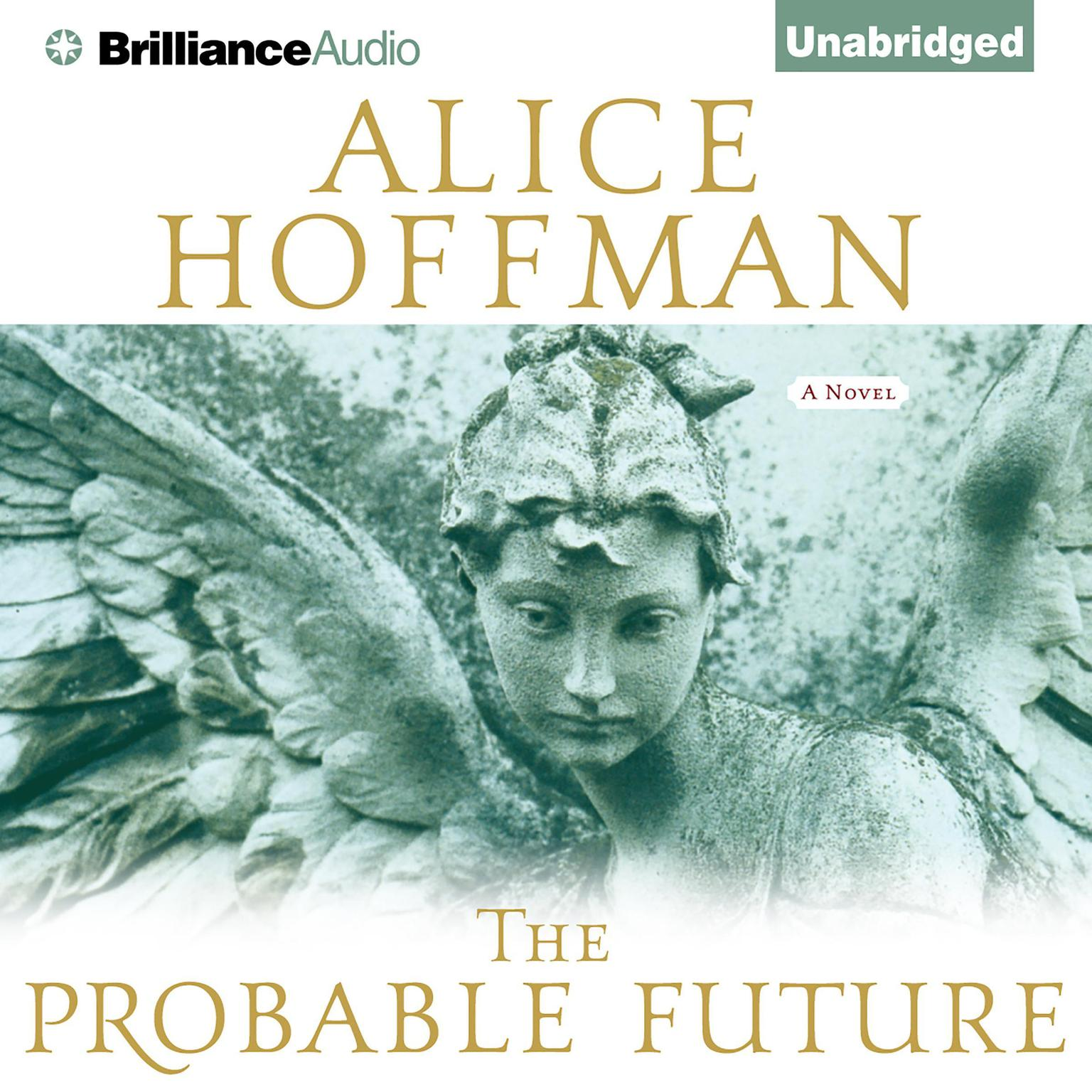 Printable The Probable Future Audiobook Cover Art