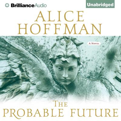 The Probable Future Audiobook, by Author Info Added Soon