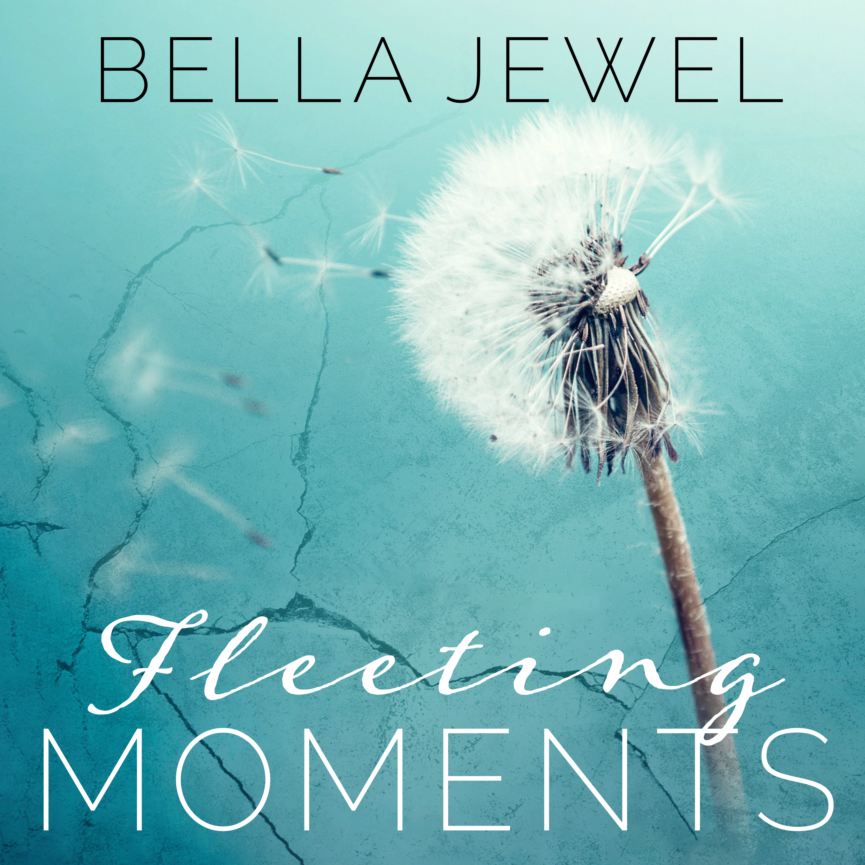 Printable Fleeting Moments Audiobook Cover Art
