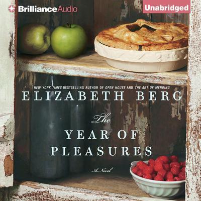 The Year of Pleasures Audiobook, by Elizabeth Berg