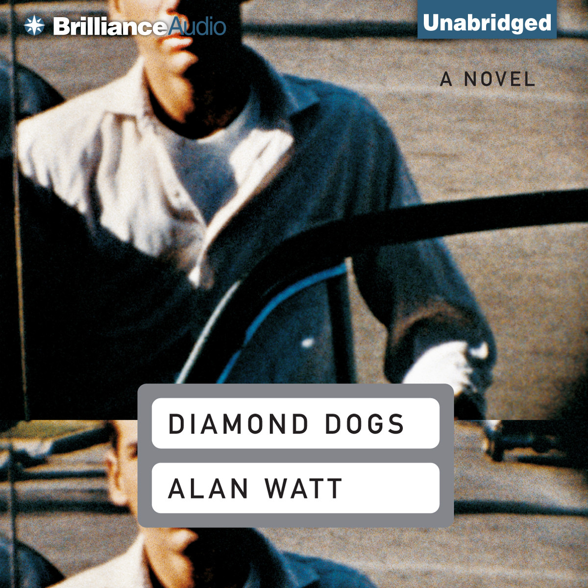 Printable Diamond Dogs Audiobook Cover Art