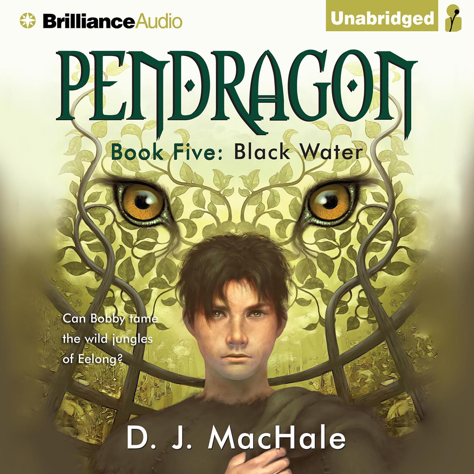 Black Water Audiobook, by D. J. MacHale