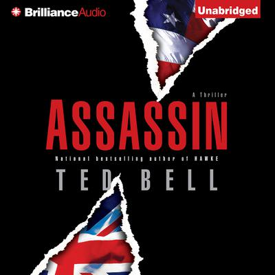Assassin Audiobook, by Ted Bell