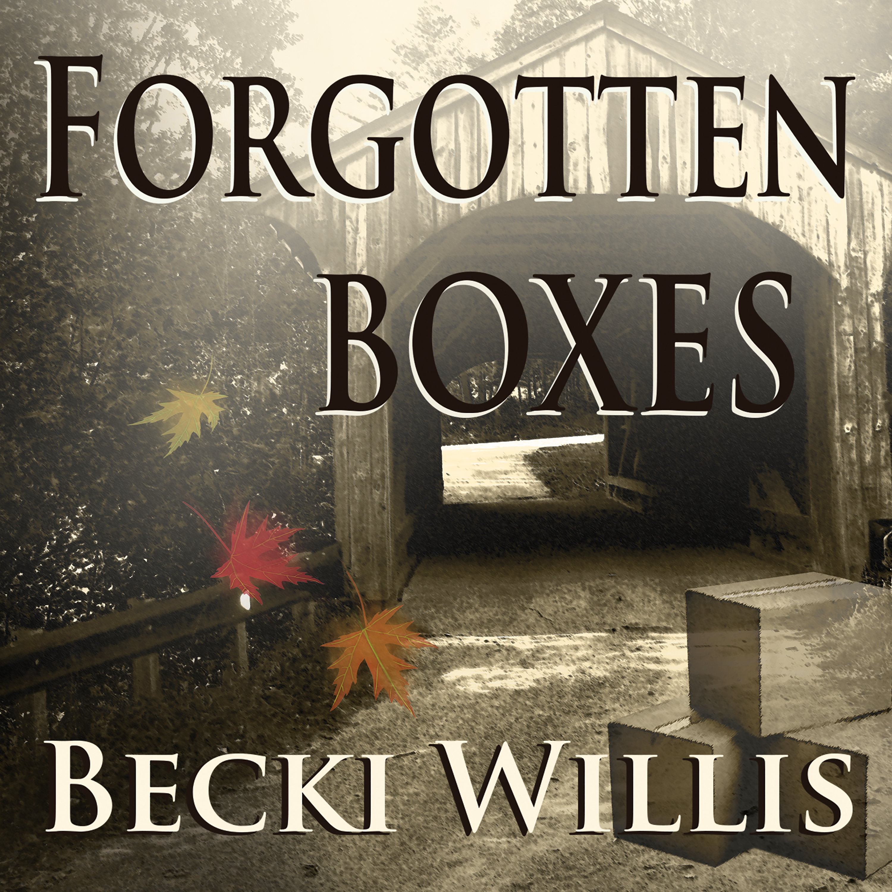 Printable Forgotten Boxes Audiobook Cover Art