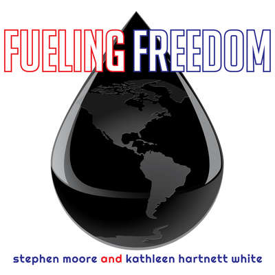 Fueling Freedom: Exposing the Mad War on Energy Audiobook, by Stephen Moore