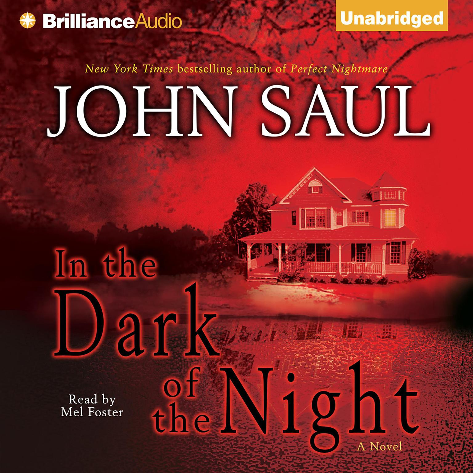 Printable In the Dark of the Night Audiobook Cover Art