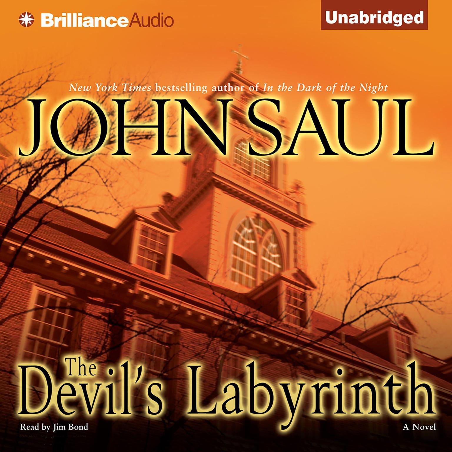 Printable The Devil's Labyrinth: A Novel Audiobook Cover Art